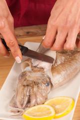 Preparing cuttlefish