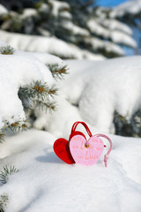 two heart at snow on fir tree