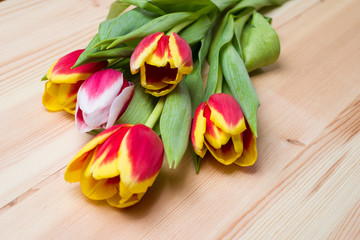 Flowers tulips on wooden background
