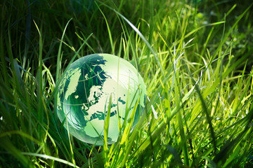 Wall Mural - glass globe in the grass
