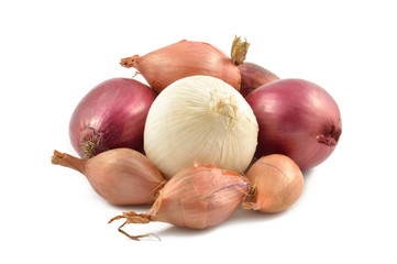 Onions, shallots, garlic and white onion