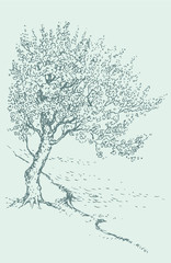 Vector  sketch blossoming spring tree on the river bank