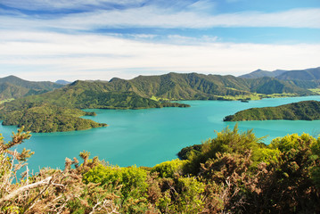 Foto auf Acrylglas Neuseeland The Marlborough Sounds, South Island of New Zealand