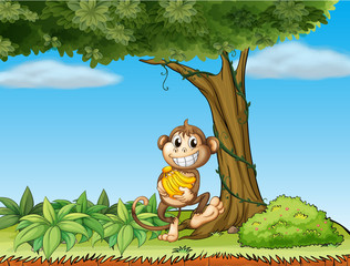 A monkey with bananas near a tree with vine plants