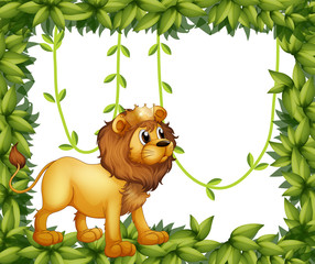 A king lion in a leafy frame