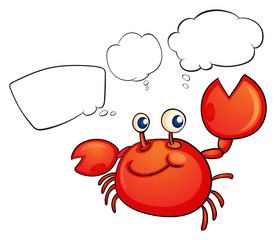 A red crab thinking