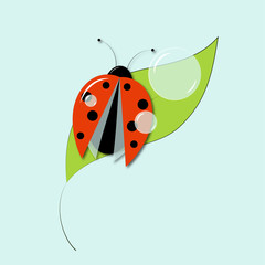 vector illustration of ladybug on green leaf