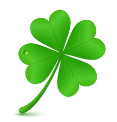 Four leaf clover. St. Patrick's day symbol