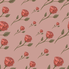 Roses, flowers. Seamless texture. vector illustration