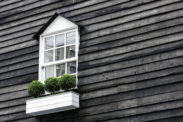 White window on old wooden wall