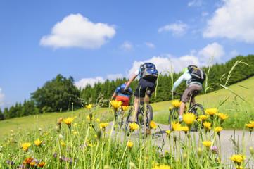 Fototapete - raus in die Natur mit dem Rad