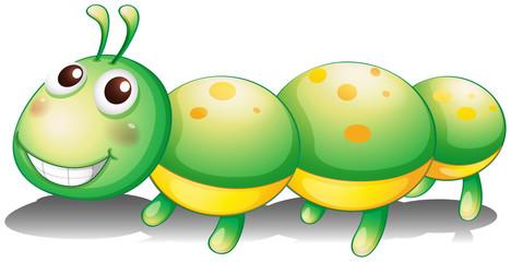 A green caterpillar toy