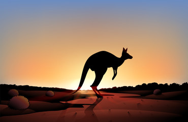 A sunset with a kangaroo