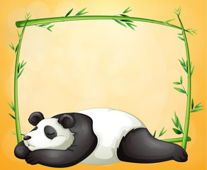 An empty frame and the sleeping panda