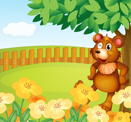Acrylic Prints Bears A bear standing near the flowers