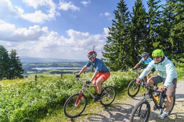 Fototapete - gemeinsame Radtour