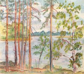 Pines near lake