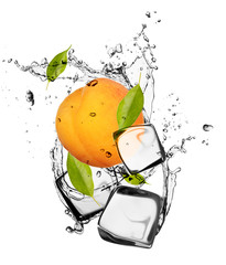 Poster In het ijs Apricot with ice cubes, isolated on white background