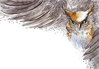 Fotobehang - bird