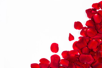 Romantic Red Rose petal frame