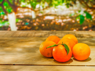 Oranges on table in nature