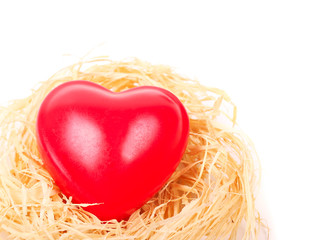 Heart in nest