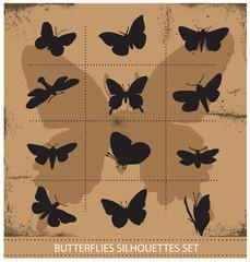 Nature various symbolical butterflies set