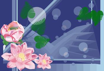pink lotus illustration on dark blue