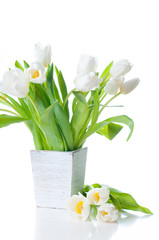 white tulips in a wooden planter