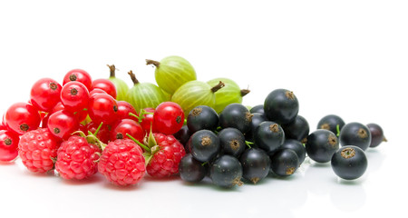 red and black currants and gooseberries on a white background.