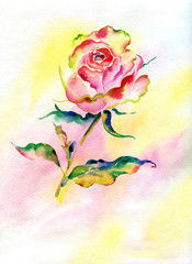 watercolor rose-1