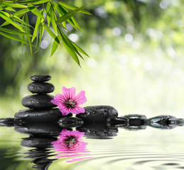 Fotobehang - black stone and hibiscus with bamboo on the water