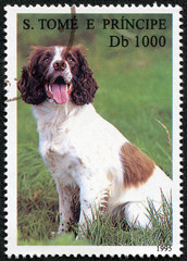 stamp printed in S. Tome e Principe showing dog