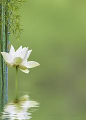 décor relaxant asiatique