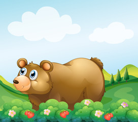 In de dag Beren A brown bear in the strawberry garden