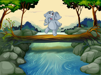 An elephant crossing the river