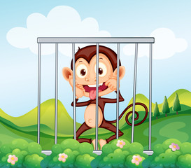 A monkey inside the cage
