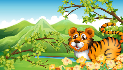 A tiger in the mountain near the flowing river