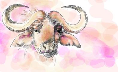 African buffalo aquarelle painting imitation