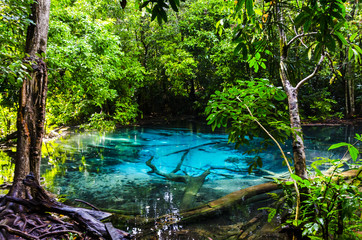 Blue pond and spring source in the jungle. Thailand