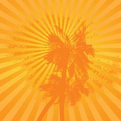 Orange summer simple palm background