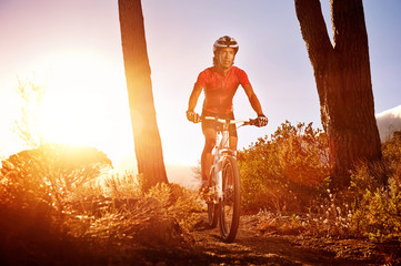 Wall Mural - mountain bike athlete