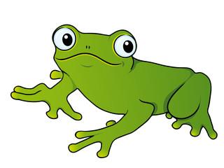 Froschkönig Frosch Märchen