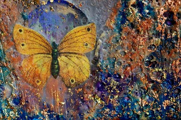 Golden Butterfly and Texture