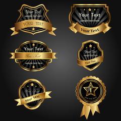 vector set black gold-framed labels
