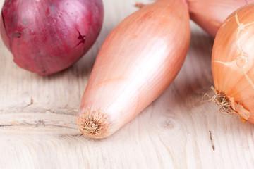 close up onions