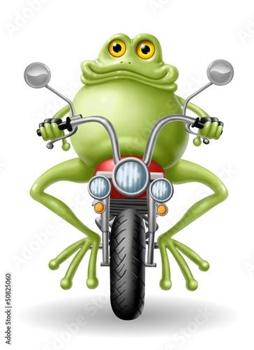 Fototapete rana biker