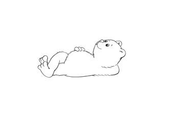 Little bear.