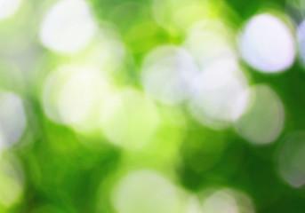 Spirng background