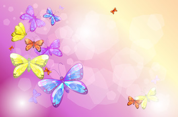 Fotorolgordijn Vlinders A stationery with colorful butterflies